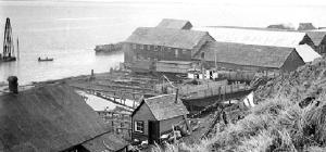 Nushagak Cannery, Alaska